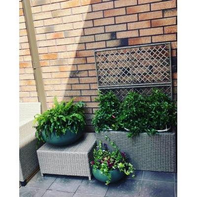 Красивый дизайн двора частного дома