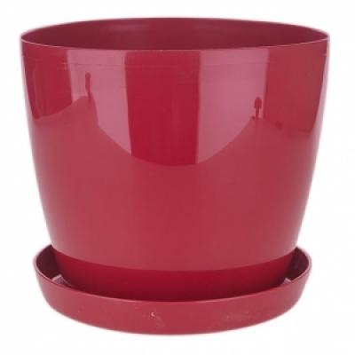 Магнолия красный,250 мм