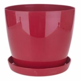 Магнолия красный,180 мм