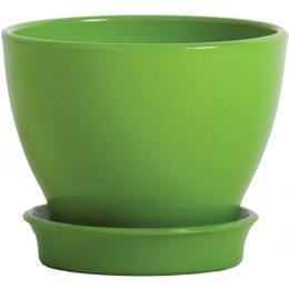 Коллекція Ксенія яскравий (КС) (Зелений)